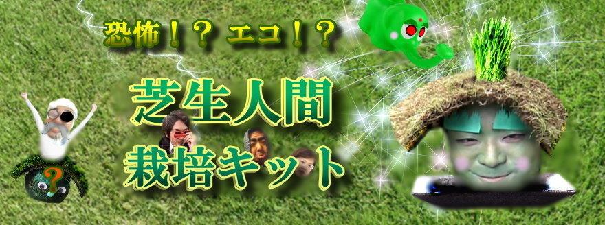 芝生人間を栽培しよう